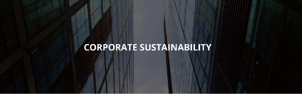 corporate sustainability measures by businesses